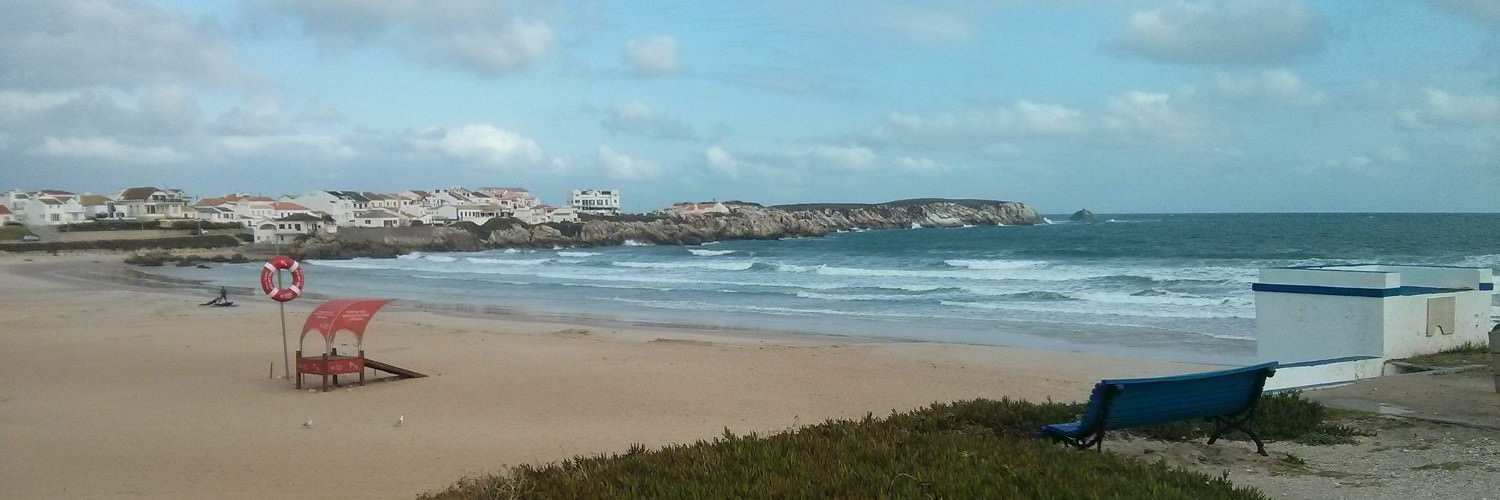 Baleal waves 156f4ab7